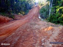 Route amazonienne