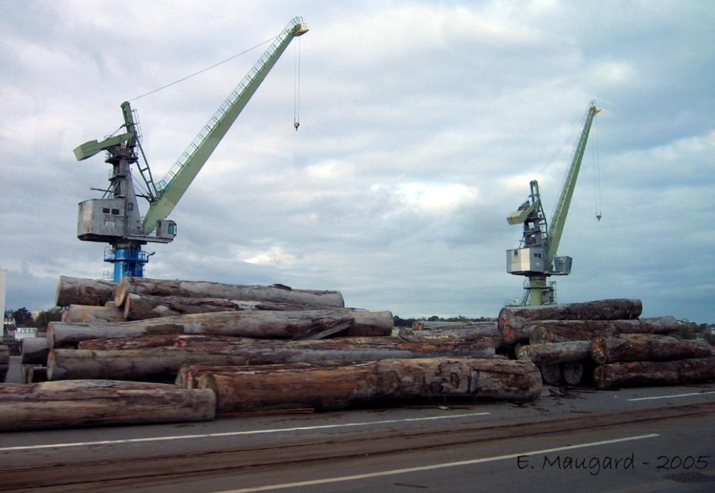 Terminal bois du port de nantes saint nazaire clio photo - Port autonome du centre et de l ouest ...