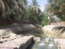 canal Oasis de Tozeur