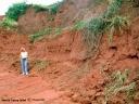 Terra roxa dans le Parana