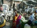 Vendeurs de légumes à Jaïpur