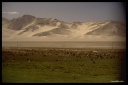 Chine, nomades tadjiks