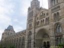 musée d'histoire naturelle de Londres