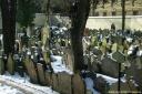 Prague - Cimetière juif